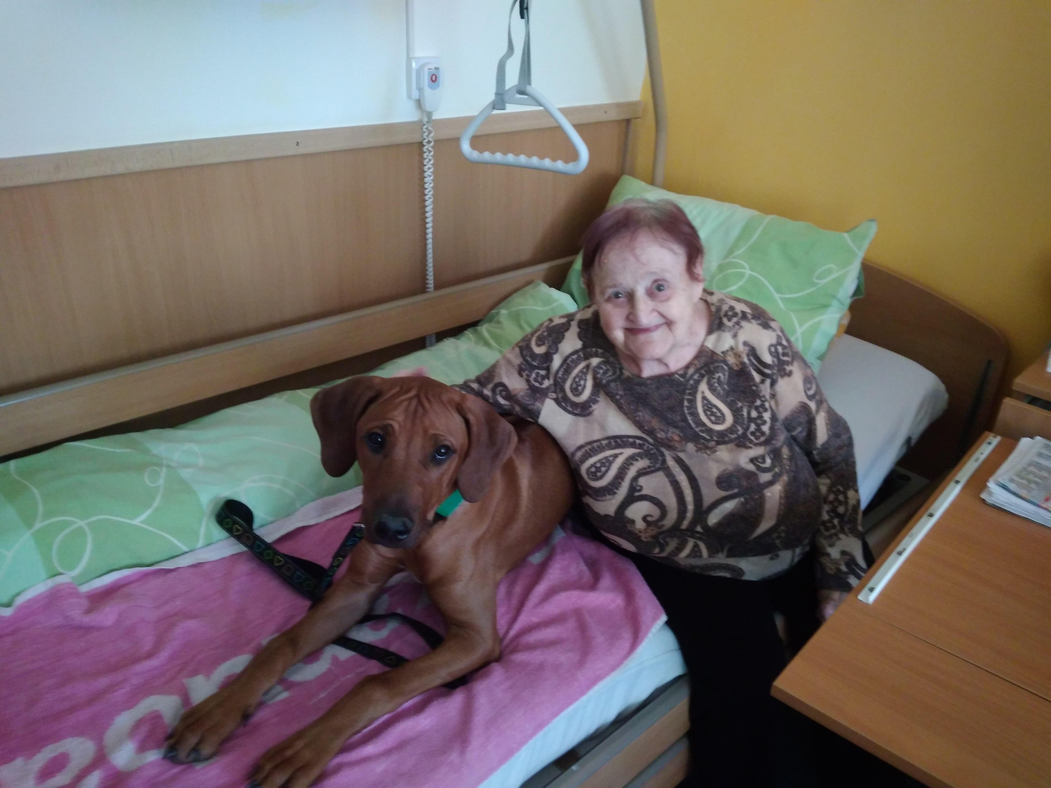 Canisterapie DD Sukolom (2)
